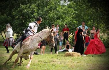 De magnifiques démonstrations équestres cette année sur EXPO60 avec Polyhorse !